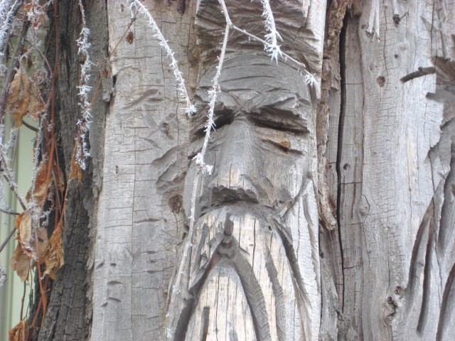 The Old Man, carved in a tree stump, down the street.